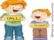 STRONG THIN BIG SMALL Short or tall? tall
