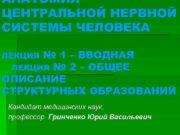 АНАТОМИЯ ЦЕНТРАЛЬНОЙ НЕРВНОЙ СИСТЕМЫ ЧЕЛОВЕКА ЛЕКЦИЯ 1