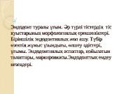 Эндодонт туралы ым.  р т рлі тістерді