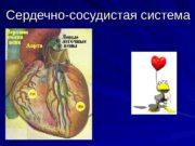 Сердечно-сосудистая система  Сердечно-сосудистая система (( systema cardiovasculare)