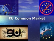 EU Common Market  EU Common Market