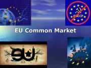 EU Common Market  EU Common Market