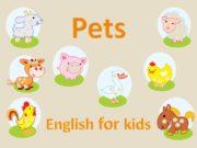 English for kids Pets [hen] hen курица [kɔk]