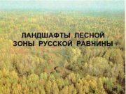 ЛАНДШАФТЫ ЛЕСНОЙ ЗОНЫ РУССКОЙ РАВНИНЫ