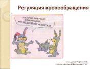 Регуляция кровообращения к м н доцент Сорокин