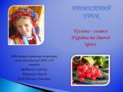 Калина — символ України та дівочої краси ПРОЕКТНИЙ