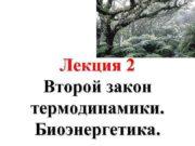 Лекция 2 Второй закон термодинамики Биоэнергетика План
