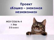 Проект Кошка знакомая незнакомка МОУ СОШ