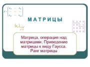 МАТРИЦЫ Матрица операция над матрицами Приведение матрицы к