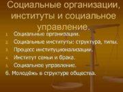 Социальные организации институты и социальное управление Социальные организации