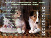 Вычислите. Зашифрованное слово – порода немецкой охотничьей собаки.