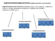 ГИДРОКСИКАРБОНОВЫЕ КИСЛОТЫ гидроксикислоты оксикислоты карбоновые кислоты в