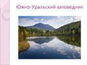 Южно-Уральский заповедник Создание заповедника Государственный природный заповедник