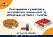 Планирование и управление предприятием по производству замороженных тортов
