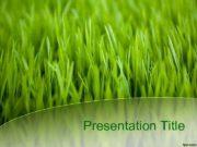 Presentation Title Загрязнение атмосферного воздуха выхлопами газа
