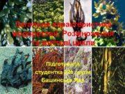 Загальна характеристика водоростей Розмноження та життєві цикли Підготувала