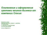 Озеленение и оформление цветами вашего бизнеса от компании