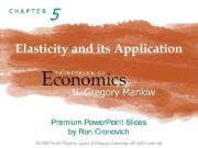 CHAPTER 5 Elasticity and its Application Economics PRINCIPLES