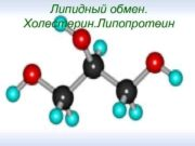 Липидный обмен Холестерин Липопротеин Липиды являются сложными
