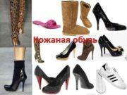Кожаная обувь Обувь является предметом первой необходимости