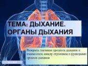 ТЕМА ДЫХАНИЕ ОРГАНЫ ДЫХАНИЯ Раскрыть значение процесса дыхания