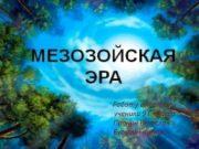 Работу выполняли ученики 9 Г класса Пронин Вячеслав