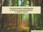 Статистическое наблюдение в области воспроизводства и защиты лесов
