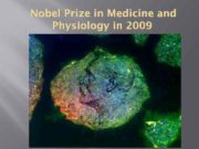 Nobel Prize in Medicine and Physiology in 2009