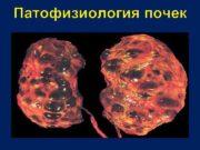 Патофизиология почек Основные функции почек РЕГУЛЯЦИЯ ВОДНОГО