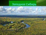 Западная Сибирь Географическое положение Западная Сибирь представляет