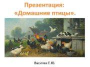 Презентация Домашние птицы Василек Е Ю