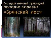Государственный природный биосферный заповедник Брянский лес Государственный