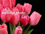 Цветочный магазин Анализ рынка Структура рынка