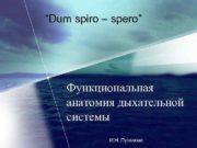 Dum spiro spero Функциональная анатомия дыхательной системы