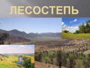 ЛЕСОСТЕПЬ Расположение природной зоны Лесостепная зона —