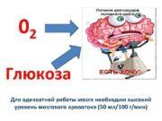 02 Глюкоза Для адекватной работы мозга необходим высокий