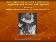 Топографическая анатомия и оперативная хирургия органов нижнего этажа
