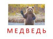 МЕДВЕДЬ Медведь очень большой выше мамы и