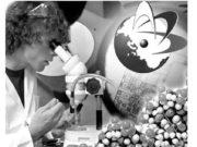 Анализ федеральной целевой программы Научные и научно-педагогические кадры