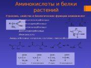 Аминокислоты и белки растений 1 Строение, свойства и