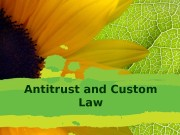 Antitrust and Custom Law  EU Antitrust Law