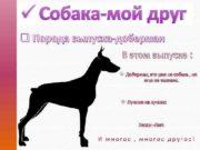 ü Собака-мой друг q Порода выпуска-доберман В этом