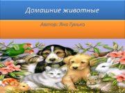 Домашние животные Автор: Яна Гунько Картинки домашних животных