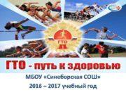 МБОУ Синеборская СОШ 2016 2017 учебный год