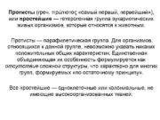 Протисты греч πρώτιστος самый первый первейший или