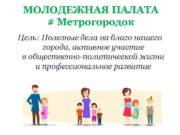 МОЛОДЕЖНАЯ ПАЛАТА Метрогородок Цель Полезные дела на