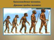 Происхождение человека Древние предки человека Теории происхождения