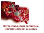 Внутренняя среда организма Значение крови ее состав