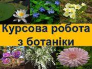 Курсова робота з ботаніки РОСЛИНИ СИНОПТИКИ У