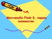 Macromedia Flash 8 первое знакомство Дело не